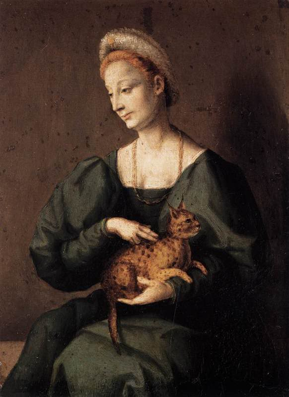 woman with a cat by bacchiacca 1540s