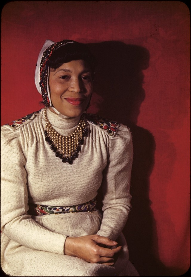 "zora hurston what its like to African american women zora neale hurston's use of black dialect and folk speech ""just because i don't harass it like some peoples us know don't."