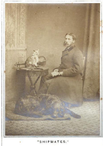 author gordon stable and ships cat and dog circa 18761 b9d8f