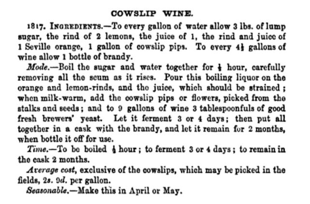 isabella beeton recipe for cowslip wine bbac9