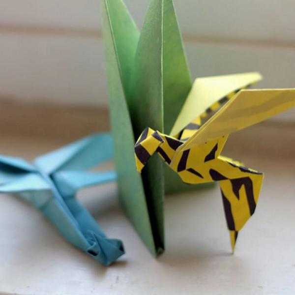 Basics of Origami with QED (Sat)