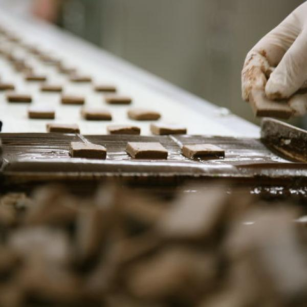 Chocolate Factory workshop with Li-Lac Chocolates