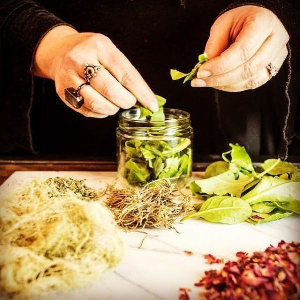 Hands-on Herbal Medicine Making with Remedies Herb Shop
